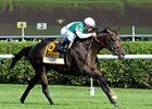 Brown Looks Ahead With Flintshire, Lady Eli