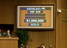 Bull Market Continues at Keeneland Sale
