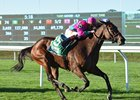 Mrs McDougal Shows the Way in Noble Damsel
