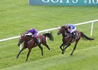 Wicklow Brave Springs Irish St. Leger Upset