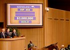 Beholder's Half Brother Brings $3 Million