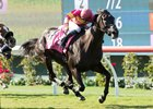 Avenge Aims for First Grade I in Rodeo Drive