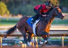 Songbird Logs Pre-Trip Breeze at Santa Anita