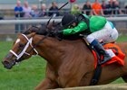 The Pizza Man Aims for Second Woodbine GI Win