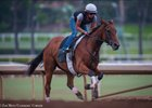 Beholder Works, Zenyatta Stakes Likely Next