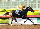 Bendable Returns for Desert Stormer at Santa Anita