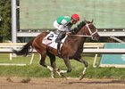 Cathryn Sophia Airs in Princess of Sylmar
