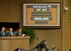 Another Airdrie Yearling for $900,000