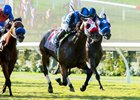 Free Rose Holds Tough for Del Mar Derby Win