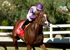 Midnight Lute Stakes Offers Chance to Step Up