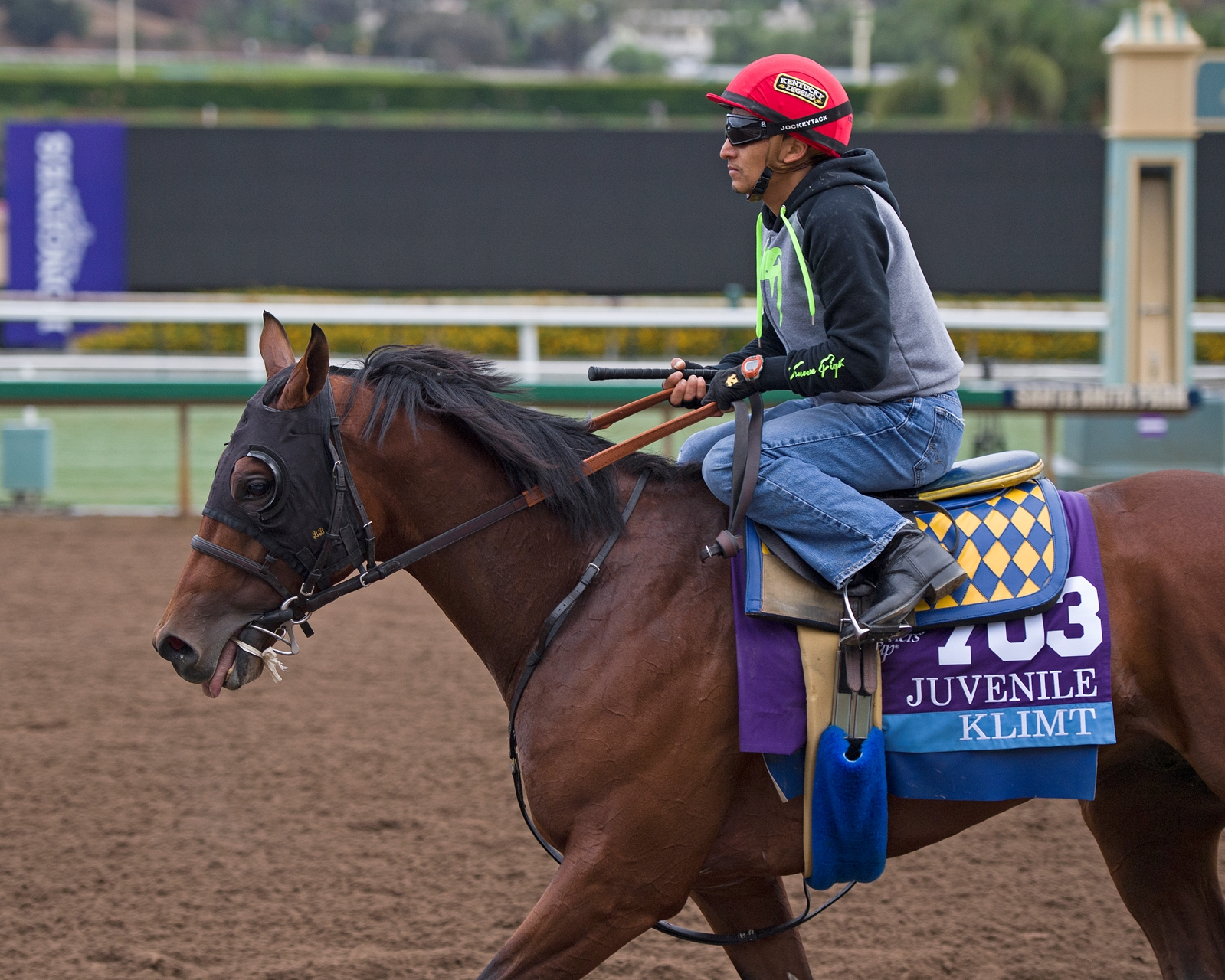 Chrome Money victor installed as even-money Breeders' Cup Classic favorite