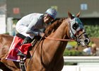 California Chrome Targets Perfect Ending