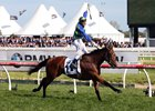 Jameka Defeats Males in Caulfield Cup