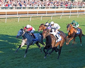 Miss Temple City Scores in Shadwell Turf Mile