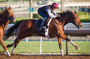 Beholder Blazes in Breeders' Cup Drill