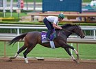 Carina Mia, Tourist Work at Santa Anita