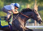 Arrogate Finishes Strong in Latest Drill