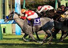 Red Falx Finds Second Gear at Nakayama