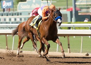 Lord Nelson to Stand at Spendthrift