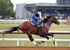 'Stubborn' Runhappy Works a Mile at Keeneland