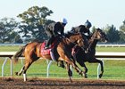 Valadorna 'Getting Close' to Seasonal Bow