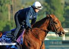 Sherman, O'Neill Welcome Shah Horses