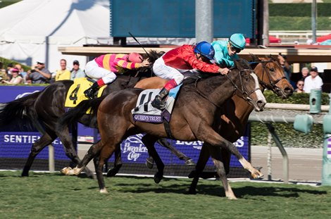 Queen S Trust Delivers In Filly Amp Mare Turf Bloodhorse Com