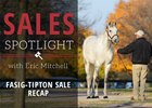 2016 Fasig-Tipton November Sale Recap