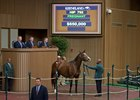 Interest in Top Mares Lifts Keeneland Session