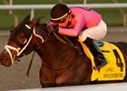 Casse Sends Out Two Stakes Winners in Display