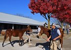 Keeneland's Foreign Outreach Pays Dividends