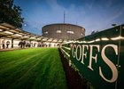 Record Goffs Breeze-Up Sale at Doncaster