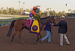 Mandella: Beholder is Unlike Any Other