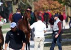 Weanlings Could Lead Keeneland Day 2