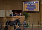 Demand for Quality Paces Keeneland Sale