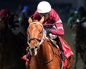 Quarantine Has Gun Runner's Pegasus Hopes in Jeopardy