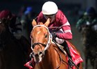 Gun Runner Likely Out of Pegasus World Cup