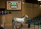 Bryan's Jewel Sells for $580K at Keeneland