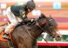 Cloud Computing, Term of Art Complete Preakness Works