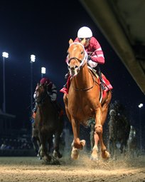 Deal Reached on Pegasus Starting Slot for Gun Runner
