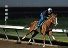 California Chrome Continues Work at Los Al