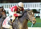 Unbeaten McCraken to Make Seasonal Bow in Sam F. Davis