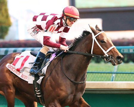 Farrell Takes Golden Rod Gate To Wire Bloodhorse