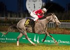 Linda Powers Home to Win Mrs. Revere Stakes