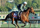Breeders' Cup Sprint Winner Drefong to Miss Malibu