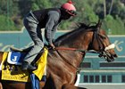 Shaman Ghost Progressing for Pegasus World Cup