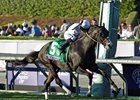 Tourist Upsets Tepin in Breeders' Cup Mile