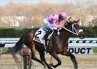 Miss Sky Warrior Holds On in Demoiselle