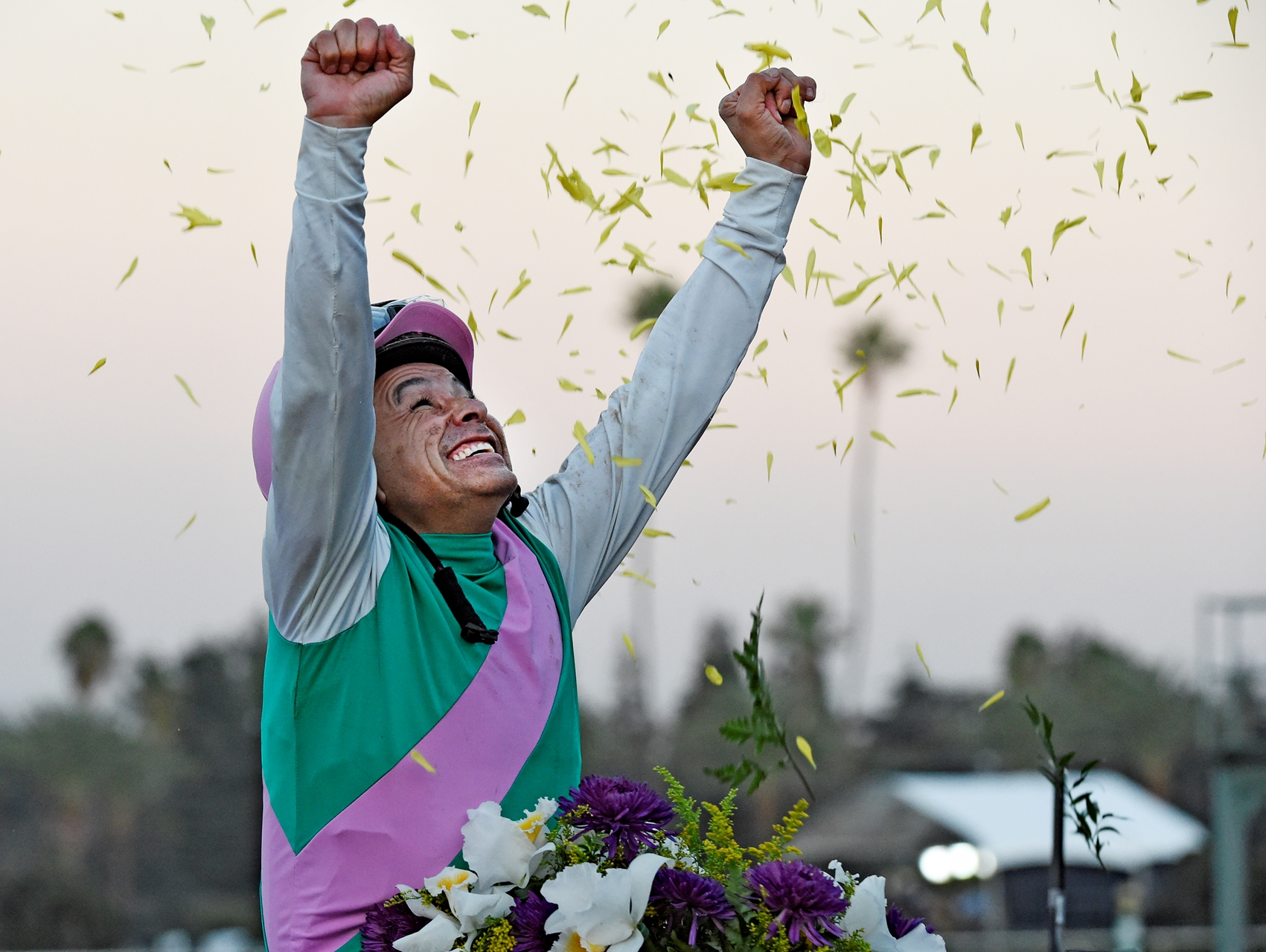 California Chrome still favourite for Horse of the Year honour