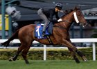 Able Friend Out to Regain Hong Kong Glory